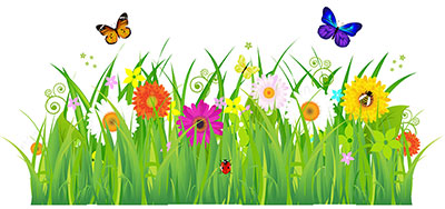 Butterfly and flower art